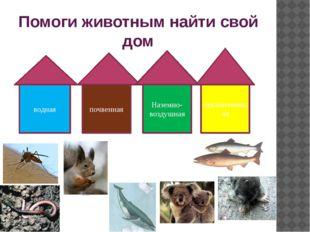 Помоги животным найти свой дом водная почвенная Наземно-воздушная организменная