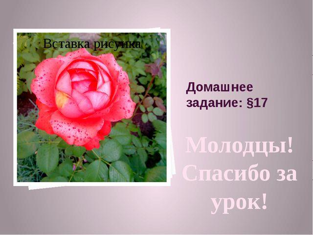 Домашнее задание: §17 Молодцы! Спасибо за урок!