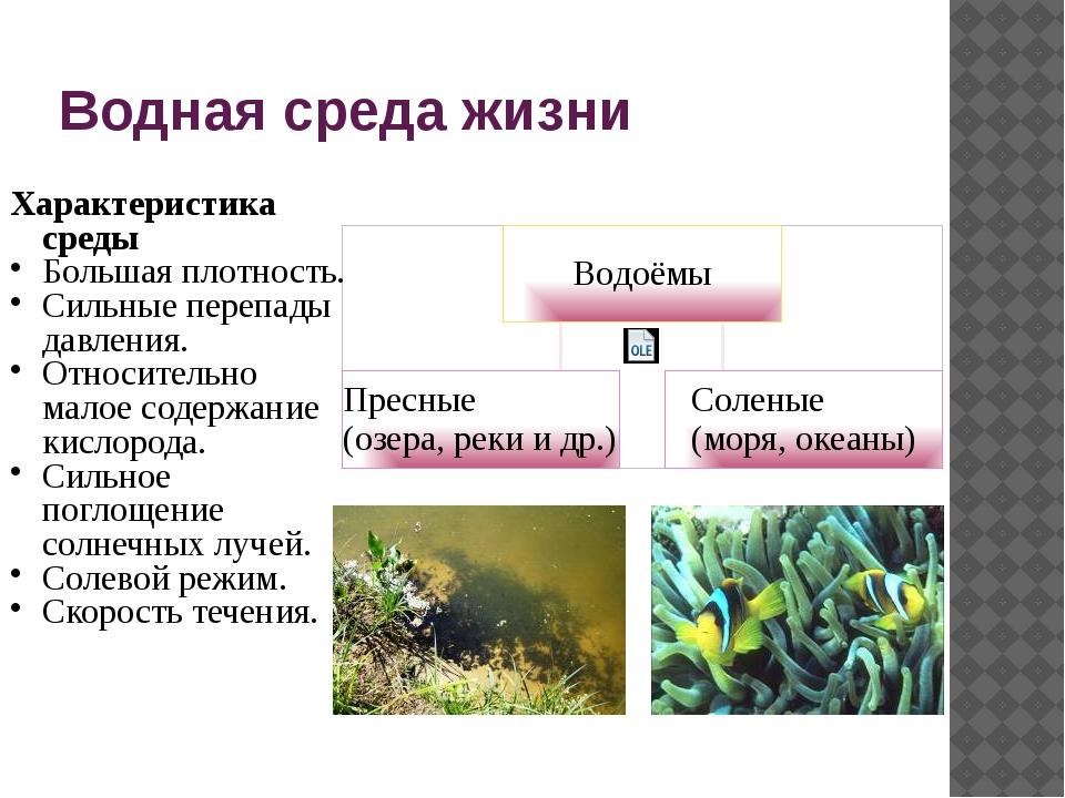 Водная среда жизни Характеристика среды Большая плотность. Сильные перепады д...