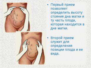Первый прием позволяет определить высоту стояния дна матки и ту часть плода,