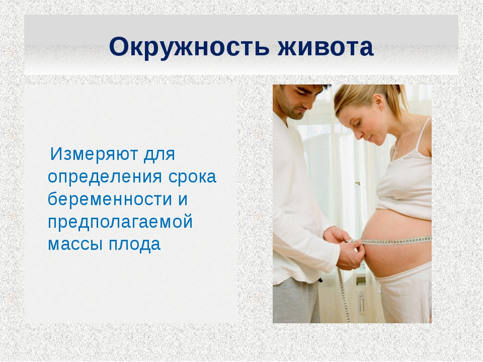 Измеряют для определения срока беременности и предполагаемой массы плода