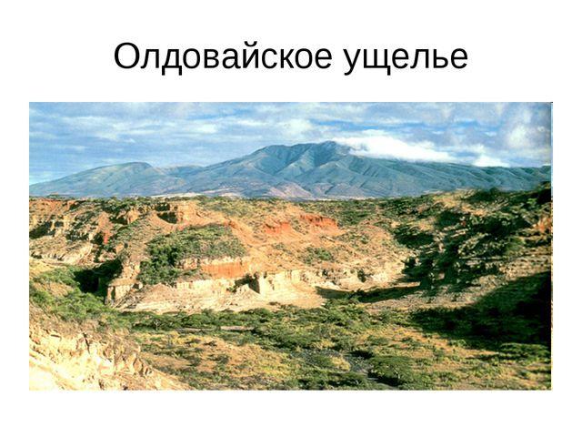 Олдовайское ущелье