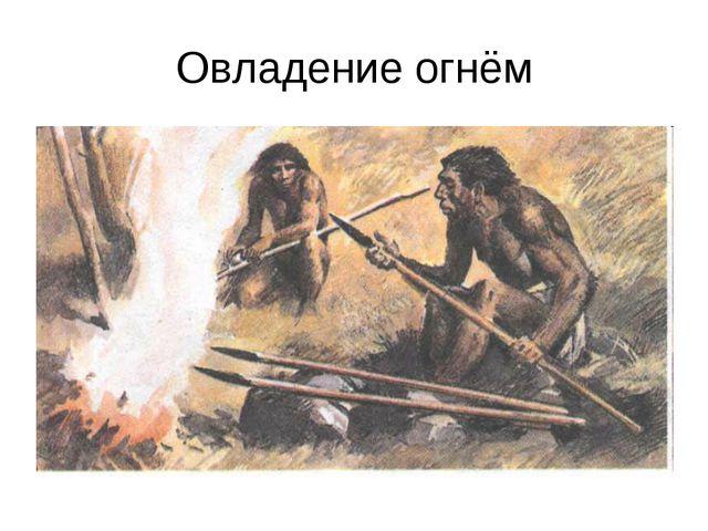 Овладение огнём
