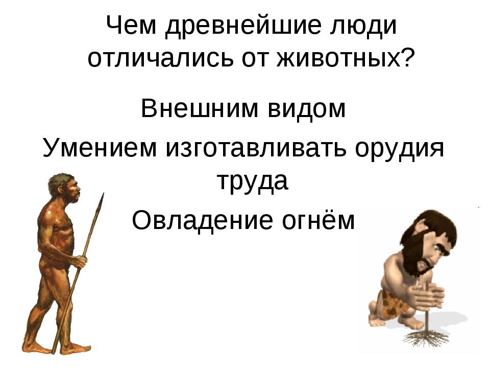 Чем древнейшие люди отличались от животных? Внешним видом Умением изготавлива...