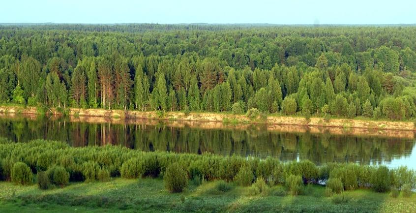 священные рощи Тоншаевского района