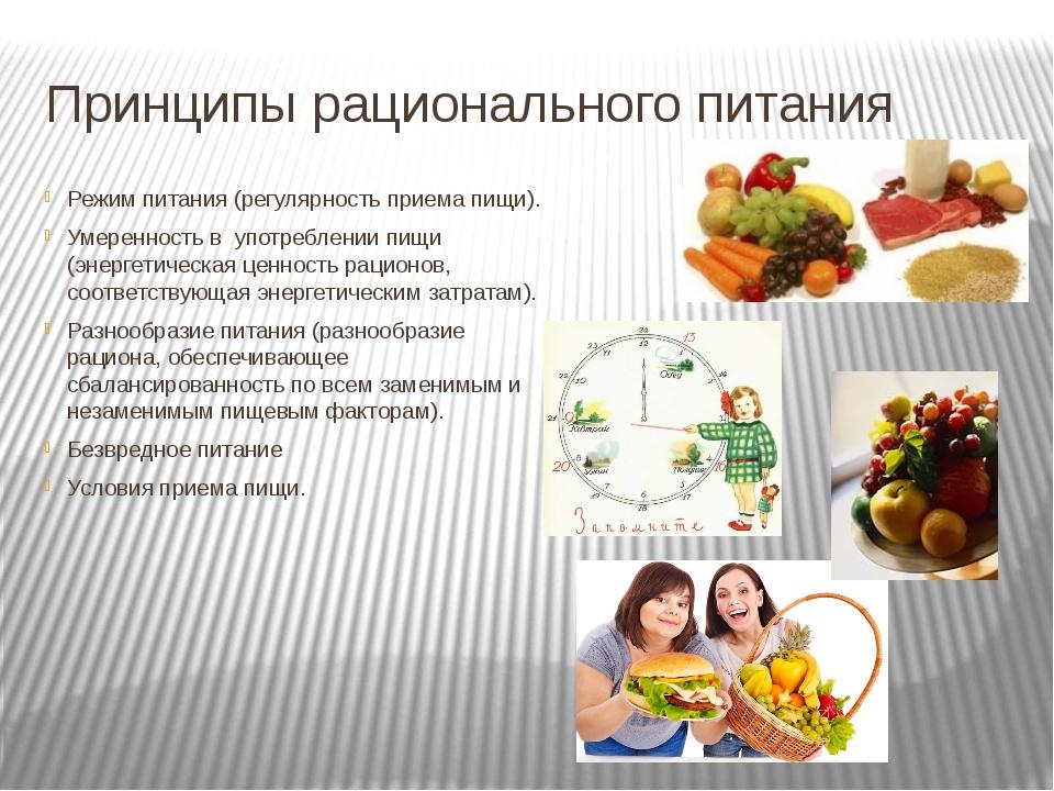 Основы рационального питания режим питания