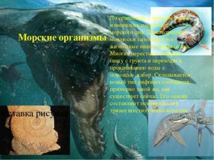 Морские организмы По сравнению с триасом очень изменилось население морского