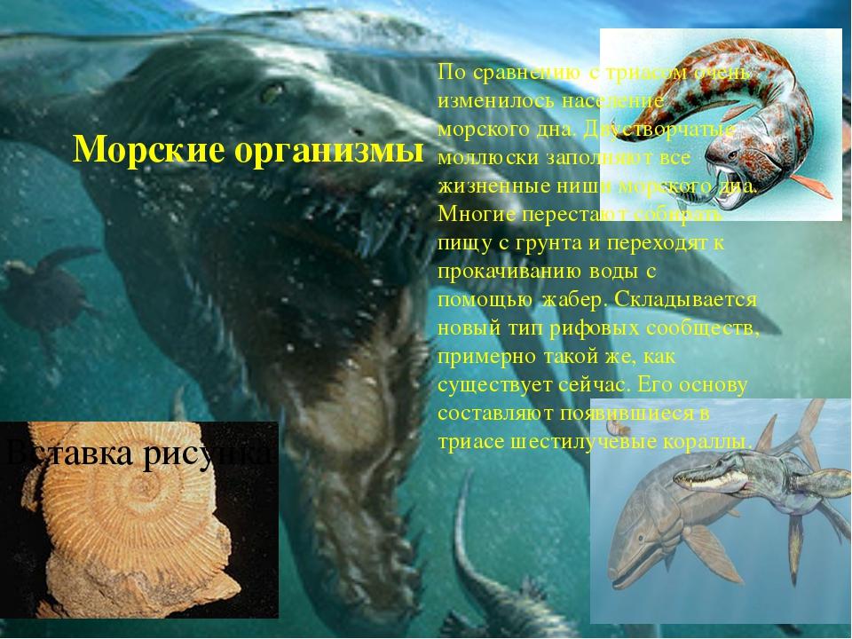 Морские организмы По сравнению с триасом очень изменилось население морского...