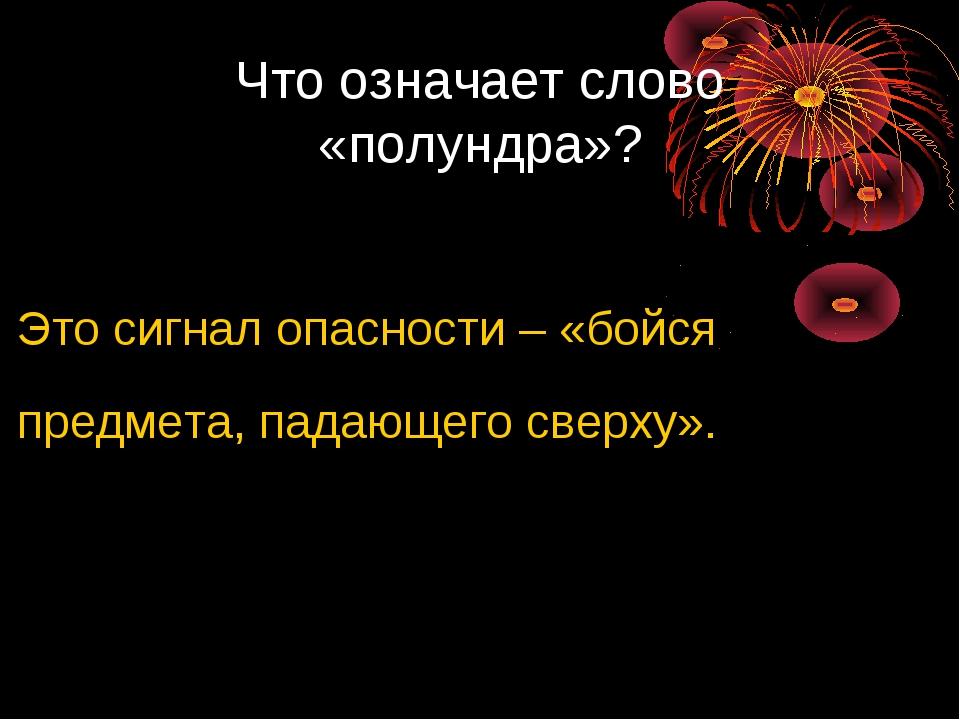 Что означает слово «полундра»? Это сигнал опасности – «бойся предмета, падающ...