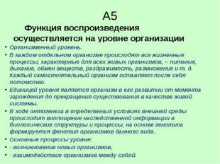 А5 Функция воспроизведения осуществляется на уровне организации 1. организме