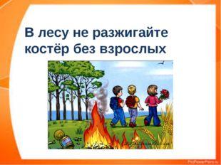 В лесу не разжигайте костёр без взрослых
