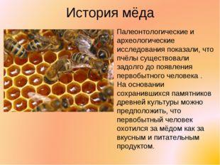 История мёда Палеонтологические и археологические исследования показали, что