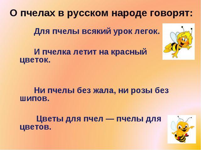О пчелах в русском народе говорят: Для пчелы всякий урок легок. И пчелка ле...