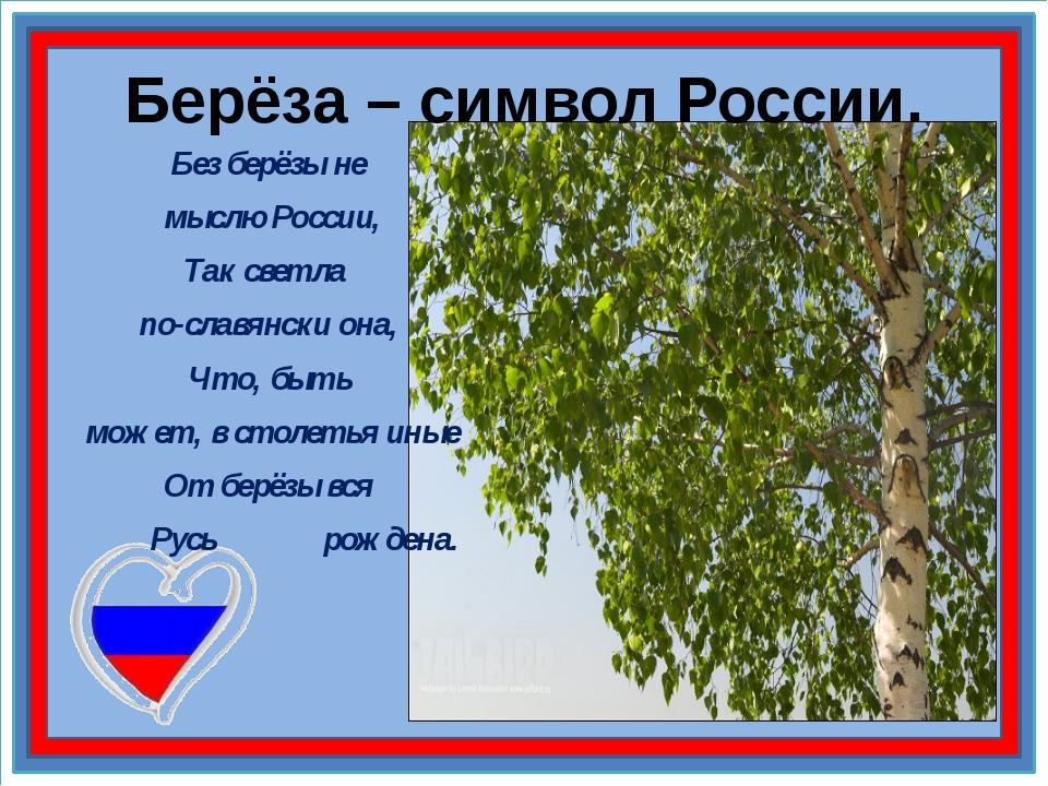 Берёза – символ России. Без берёзы не мыслю России, Так светла по-славянски о...