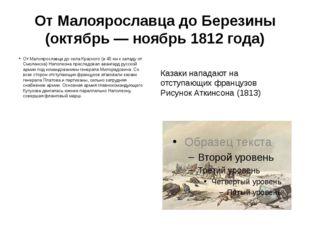 От Малоярославца до Березины (октябрь— ноябрь 1812года) От Малоярославца до