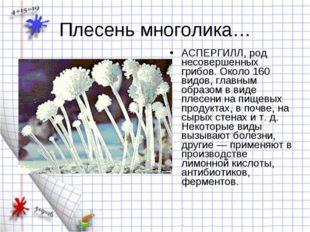 Плесень многолика… АСПЕРГИЛЛ, род несовершенных грибов. Около 160 видов, глав