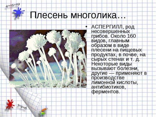 Плесень многолика… АСПЕРГИЛЛ, род несовершенных грибов. Около 160 видов, глав...