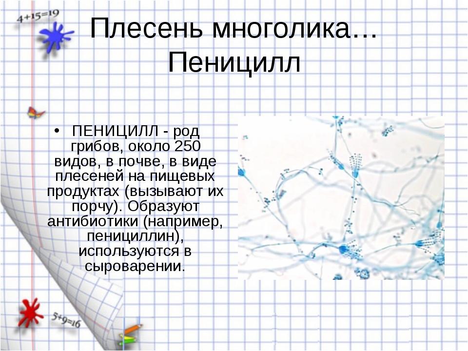 Плесень многолика… Пеницилл ПЕНИЦИЛЛ - род грибов, около 250 видов, в почве,...