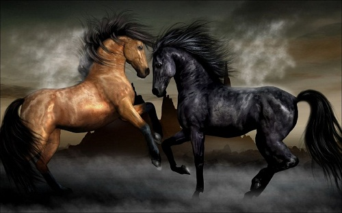 http://100facts.ru/wp-content/uploads/2013/02/horses6.jpg