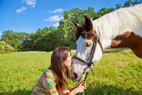 Топ-10: интересные факты о лошадях