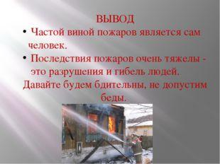 ВЫВОД Частой виной пожаров является сам человек. Последствия пожаров очень тя