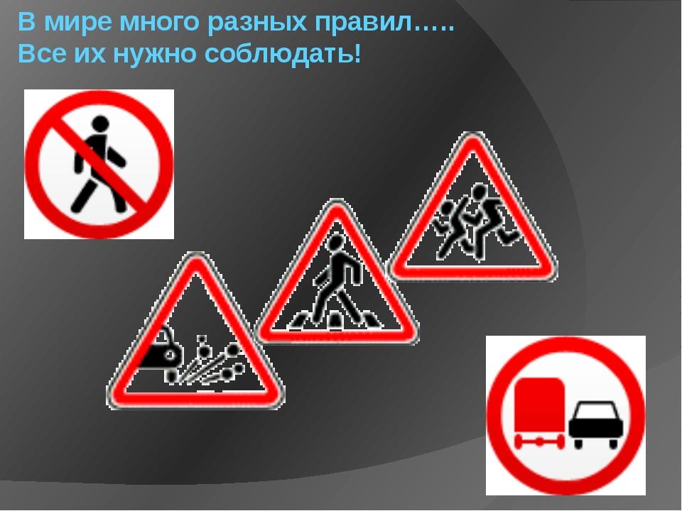В мире много разных правил….. Все их нужно соблюдать!