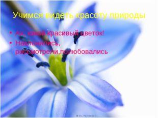 Учимся видеть красоту природы Ах, какой красивый цветок! Наклонились, рассмот