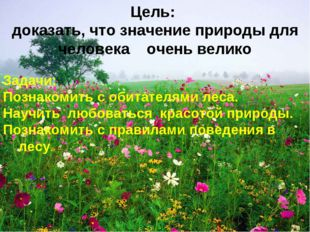 Задачи: Познакомить с обитателями леса. Научить любоваться красотой природы.