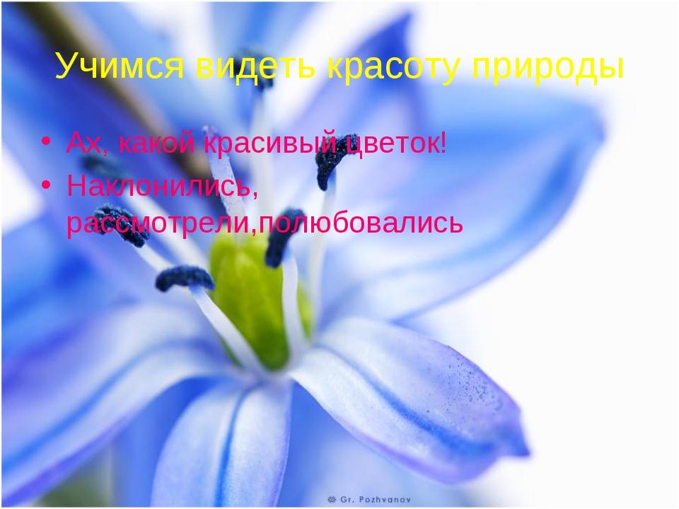Учимся видеть красоту природы Ах, какой красивый цветок! Наклонились, рассмот...