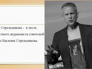 Ул. Стрельникова - в честь известного журналиста советской эпохи Василия Стре