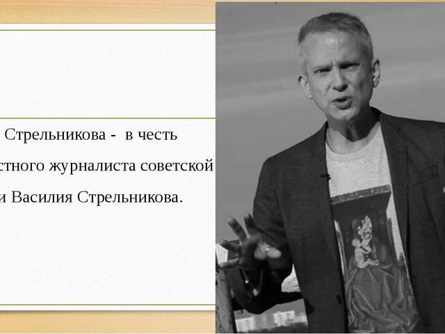 Ул. Стрельникова - в честь известного журналиста советской эпохи Василия Стре...