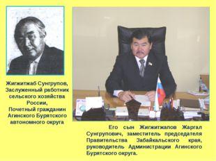 Жигжитжаб Сунгрупов, Заслуженный работник сельского хозяйства России, Почетны