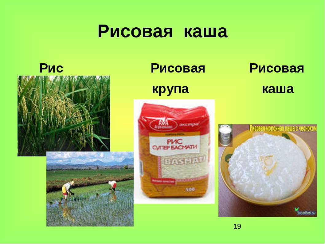 * Рисовая каша Рис Рисовая Рисовая крупа каша