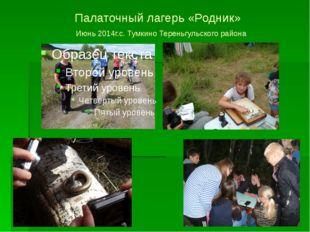 Палаточный лагерь «Родник» Июнь 2014г.с. Тумкино Тереньгульского района