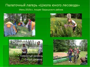 Палаточный лагерь «Школа юного лесовода» Июнь 2015г.с. Акшуат Барышского района