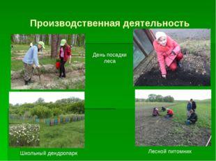 Производственная деятельность День посадки леса Школьный дендропарк Лесной пи