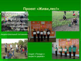 Проект «Живи,лес!» Акция«Школьный питомник» Акция «Посади и вырасти дерево»