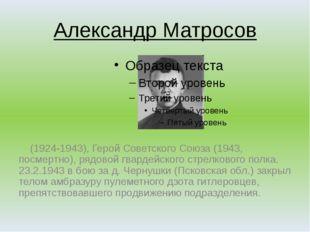Александр Матросов (1924-1943), Герой Советского Союза (1943, посмертно), ряд