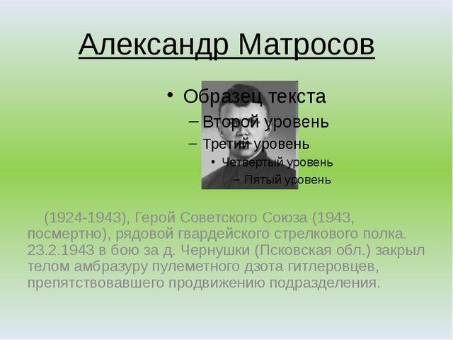 Александр Матросов (1924-1943), Герой Советского Союза (1943, посмертно), ряд...