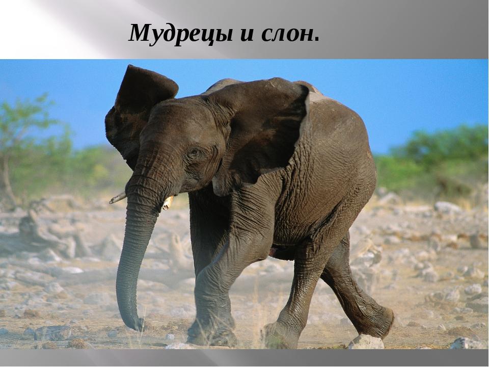 Мудрецы и слон.