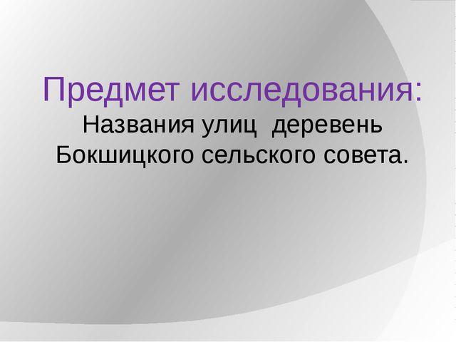Предмет исследования: Названия улиц деревень Бокшицкого сельского совета.