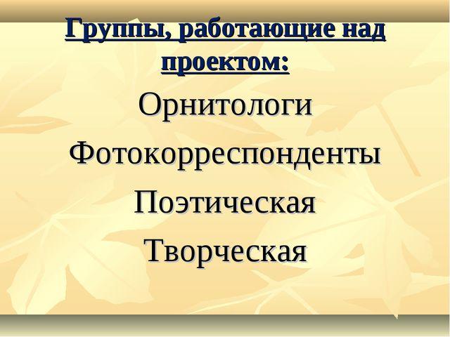 Группы, работающие над проектом: Орнитологи Фотокорреспонденты Поэтическая Тв...