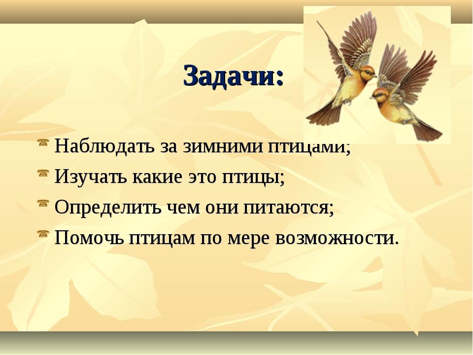 Задачи: Наблюдать за зимними птицами; Изучать какие это птицы; Определить чем...