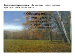 Вид на «широкую» поляну. Да умиления трогает природа: луга, леса - хлеба , па