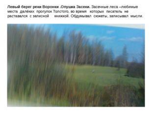 Левый берег реки Воронки .Опушка Засеки. Засечные леса –любимые места далёки