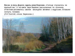 Весна в лесу. Дорога вдоль реки Воронки. «Солнце спускалось за крупный лес ;
