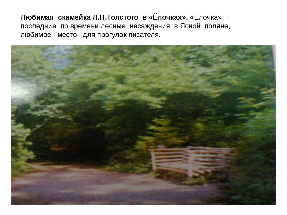 Любимая скамейка Л.Н.Толстого в «Ёлочках». «Ёлочка» - последние по времени л...