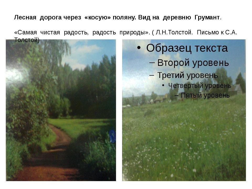 Лесная дорога через «косую» поляну. Вид на деревню Грумант. «Самая чистая рад...