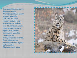 Снежный барс внесен в Красную книгу Международного союза охраны природы (МСОП