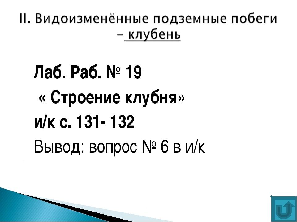 Лаб. Раб. № 19 « Строение клубня» и/к с. 131- 132 Вывод: вопрос № 6 в и/к